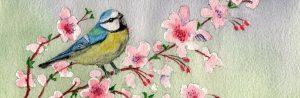 [Titre du site] PIXABAY_SAKURA_watercolour-1578077_1280x416