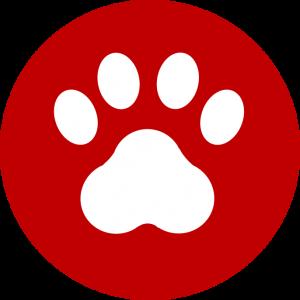 [Titre du site] picto Pet