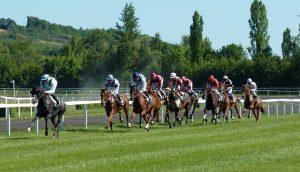 [Titre du site] horse-race-1665688_640