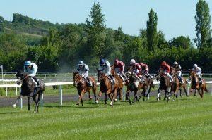 [Titre du site] pixabay_horse-race-1665688_640x425